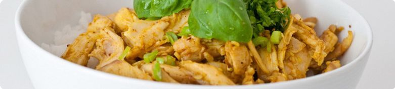 Hühnerfleisch  - Wu's Cooking