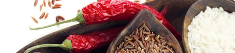 Body-Fit Reisgerichte - Bio Frische