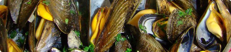 Hauptgerichte mit Muscheln - Il Primo