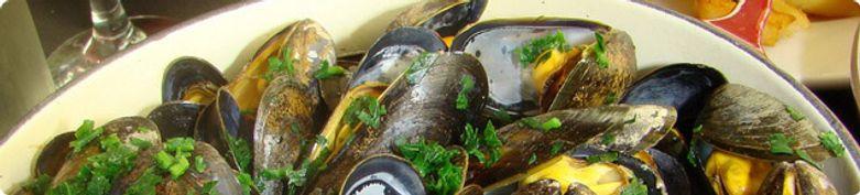 Pesce / Fisch - Isola Verde