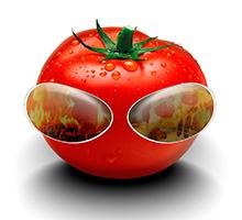 Tomatti Étterem, Törökbálint, OnLine ételrendelés