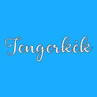 Tengerkék Gofri-Palacsinta, Budapest, Internetes ételrendelés
