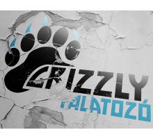 Grizzly Burger, Debrecen, Internetes ételrendelés
