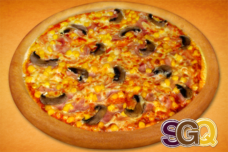 SGQ  fit and slim pizza (26cm)