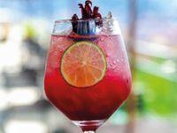 Soda  de Jamaica 16 Oz.