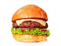 Burger Sola 180 gr