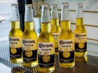 6 latas de cerveza Corona porrón