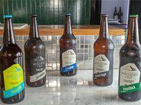 Cerveza Volcanes 1050 cc Variedades