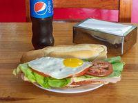 Promo - Sándwich de milanesa de carne o pollo completo + gaseosa 500 ml